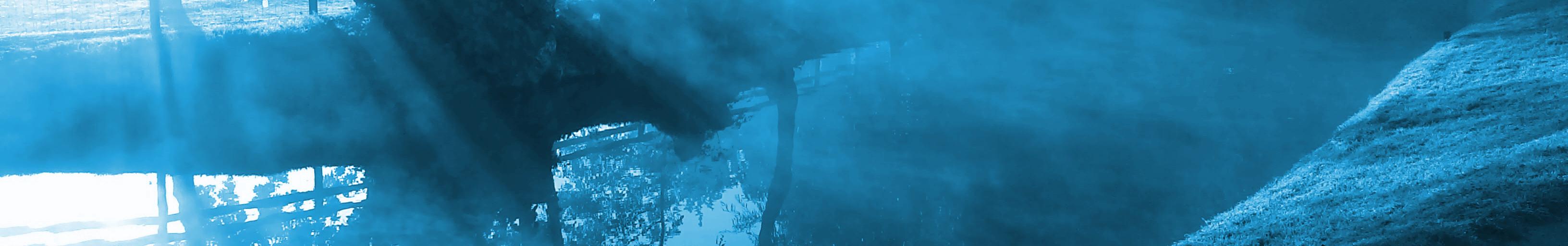 ground near calm stream sun streams through blue fog